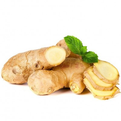 GreenFresh - Ginger
